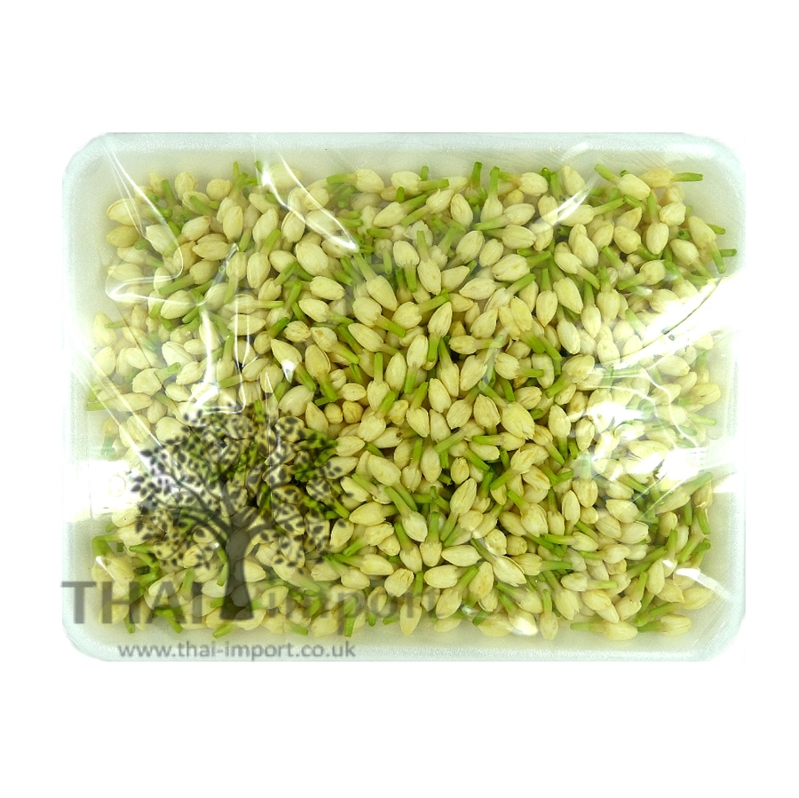 Jasmine Flower Thai Import